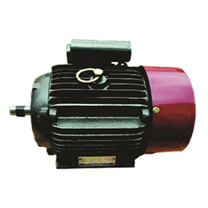 Induction motor Manufacturers & suppliers